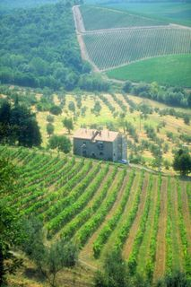 Explore the wines of Italy this weekend