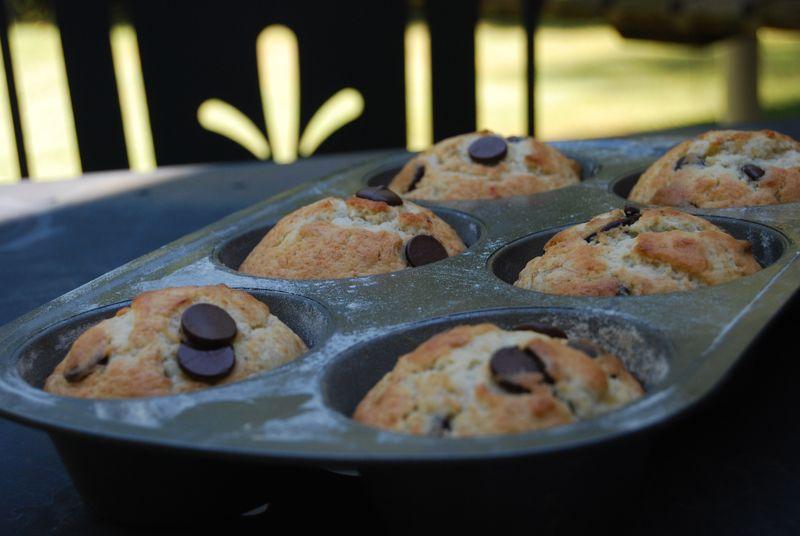 Banana chocolate chip muffins! photo by Mary MacRae Warren